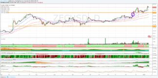 Zcash Dollaro, la volatilità è alta