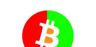 Bitcoin e le altre criptovalute, bear e bull