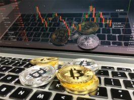 Ci chiediamo se il successo del Bitcoin dipenda solo dal bitcoin, oppure anche da altri fattori
